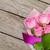 garden pink roses bouquet over wooden table stock photo © karandaev
