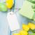 huevos · de · Pascua · etiqueta · azul · mesa · de · madera · superior · vista - foto stock © karandaev