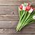 piros · fehér · tulipánok · virágcsokor · fából · készült · felső - stock fotó © karandaev