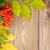 sonbahar · yaprakları · çuval · bezi · doğa · sanat · kırmızı · çanta - stok fotoğraf © karandaev