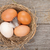 vogels · nest · ei · geïsoleerd · witte · gras - stockfoto © karandaev