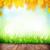 nyár · fapadló · zöld · fű · bokeh · napfény · tavasz - stock fotó © karandaev
