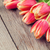 piros · tulipánok · fa · asztal · kék · felső · kilátás - stock fotó © karandaev