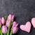 iki · nektar · mor · çiçekler · çiçek - stok fotoğraf © karandaev