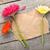 три · красочный · цветы · деревянный · стол - Сток-фото © karandaev