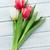 színes · tulipánok · virágcsokor · fából · készült · piros · fehér - stock fotó © karandaev