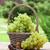 fehér · szőlő · kosár · kert · asztal · étel - stock fotó © karandaev