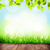 summer background with floor grass and bokeh stock photo © karandaev