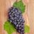 деревянный · стол · фрукты · фон · зеленый - Сток-фото © karandaev