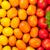 kleurrijk · tomaten · Geel · oranje · Rood - stockfoto © karandaev