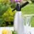 soda · água · limão · fatias · vidro · textura - foto stock © karandaev