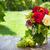 bunch of garden flowers and grape stock photo © karandaev