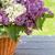 colorido · lila · flores · jardín · mesa · superior - foto stock © karandaev