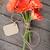 цветы · тег · деревянный · стол · природы · рождения - Сток-фото © karandaev