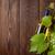 köteg · szőlő · fehérbor · dugóhúzó · fa · asztal · étel - stock fotó © karandaev