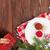 tablo · kırmızı · hediye · yemek · masası · şarap - stok fotoğraf © karandaev