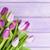 friss · lila · tulipánok · köteg · közelkép · stúdiófelvétel - stock fotó © karandaev