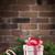 karácsony · ajándék · doboz · fenyőfa · ág · fa · asztal · kilátás - stock fotó © karandaev