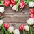 kolorowy · tulipany · czerwony · biały · górę - zdjęcia stock © karandaev