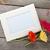 три · красочный · цветы · деревянный · стол · копия · пространства · природы - Сток-фото © karandaev