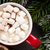 christmas fir tree and hot chocolate with marshmallow stock photo © karandaev