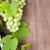 bunch of grapes and red wine bottle stock photo © karandaev