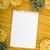 levélpapír · olasz · tészta · különböző · ezüst · étkészlet · fény - stock fotó © karandaev