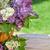 colorido · flores · jardim · tabela · topo - foto stock © karandaev