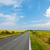 estrada · amarelo · girassol · campo · céu - foto stock © karandaev