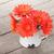 оранжевый · цветы · Кубок · пить · деревянный · стол · изолированный - Сток-фото © karandaev