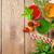 légumes · frais · smoothie · tomate · concombre · table · en · bois · haut - photo stock © karandaev
