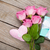 pink roses over wooden table with valentines day gift box and he stock photo © karandaev
