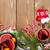 traditioneel · christmas · houten · gedroogd · sinaasappelen · krans - stockfoto © karandaev