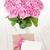 sevgililer · günü · pembe · güller · buket · hediye · kutusu · beyaz - stok fotoğraf © karandaev