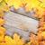 Colorful autumn maple leaves frame stock photo © karandaev