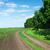 countryside road stock photo © karandaev