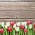 színes · tulipánok · fából · készült · piros · fehér · felső - stock fotó © karandaev