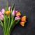 新鮮な · カラフル · チューリップ · 花 · 暗い · 石 - ストックフォト © karandaev