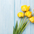 свежие · тюльпаны · синий · красочный · весенние · цветы - Сток-фото © karandaev