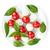 bileşen · caprese · malzemeler · çanak · tablo · yaprak - stok fotoğraf © karandaev