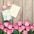 ajándék · doboz · rózsaszín · rózsák · üres · kártya · papír · esküvő - stock fotó © karandaev