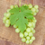 monte · uvas · mesa · de · madeira · comida · vinho · fundo - foto stock © karandaev