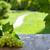 vinícola · jardim · belo · uvas · céu - foto stock © karandaev