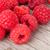 fresh ripe raspberries on wooden table stock photo © karandaev