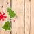 Natale · legno · copia · spazio · texture · legno - foto d'archivio © karandaev