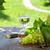 white wine bottle and glass with white grape stock photo © karandaev