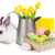 easter with colorful eggs yellow tulips and rabbit stock photo © karandaev
