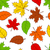 seamless autumn leaves pattern stock photo © karandaev