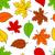 kolorowy · roślin · wzór · tkaniny · tekstury · strony - zdjęcia stock © karandaev