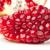red pomegranate stock photo © karandaev
